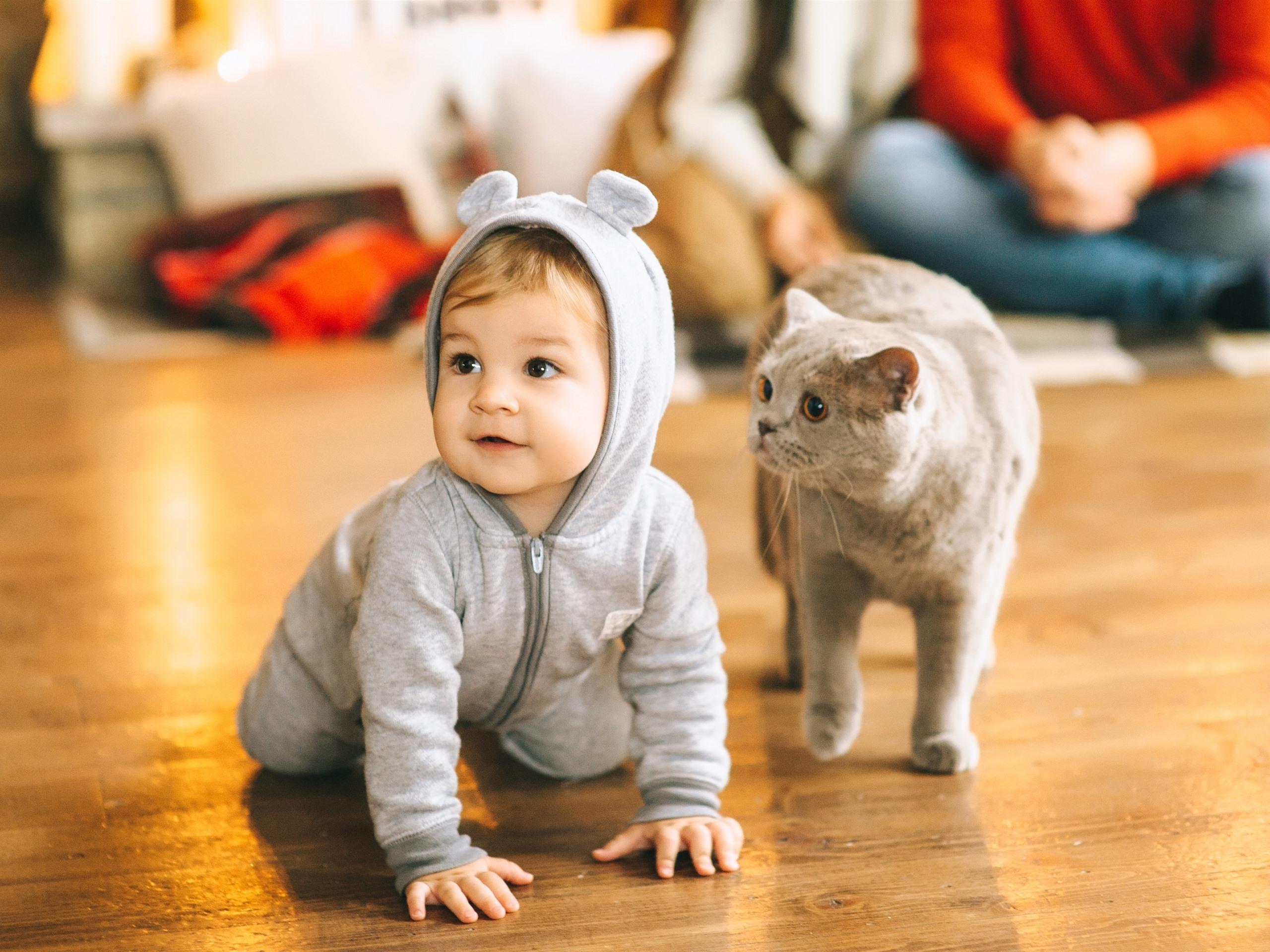 картинки кот и малышка как