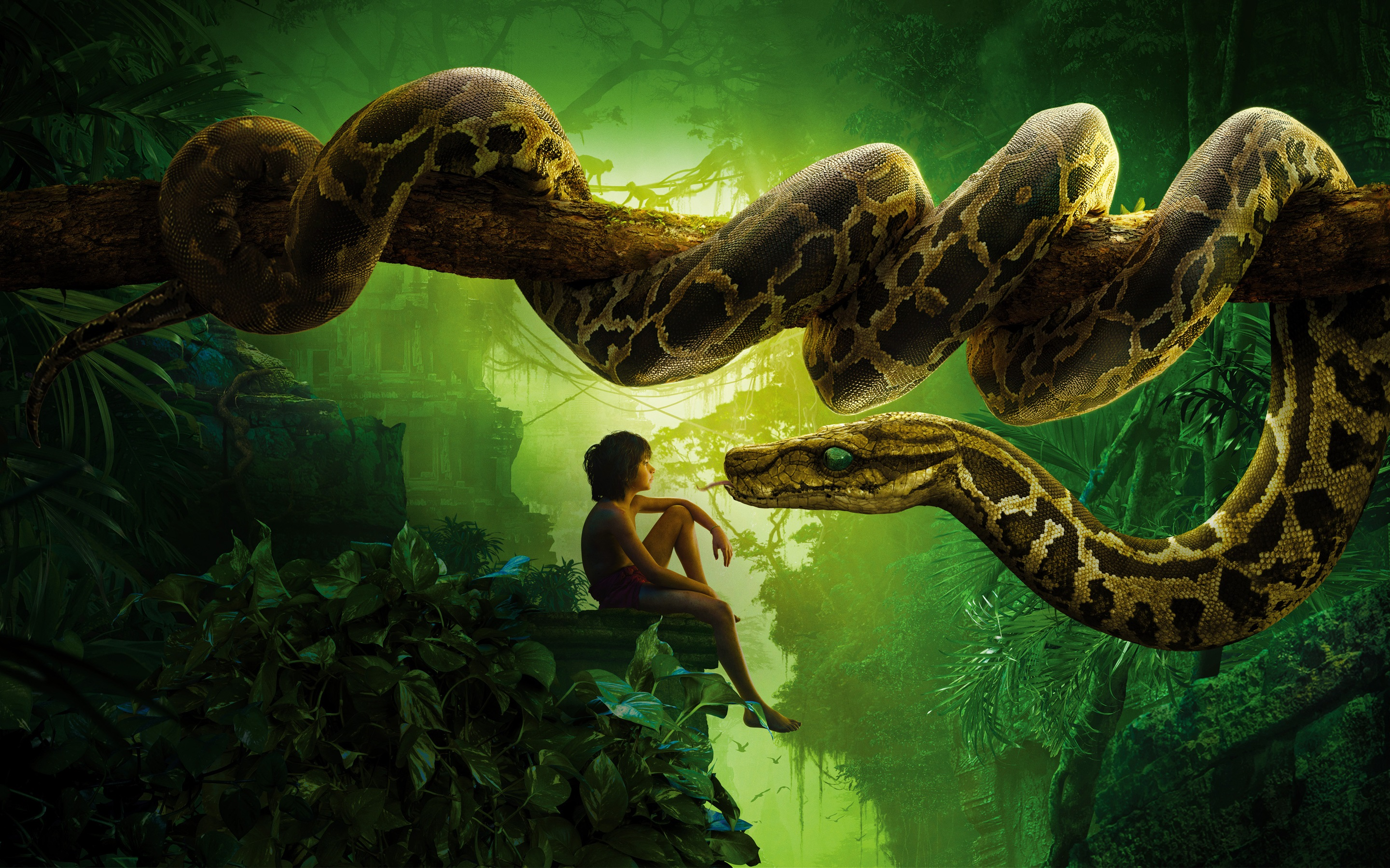 Jungle Book, boy and snake 2880x1800 HD ...