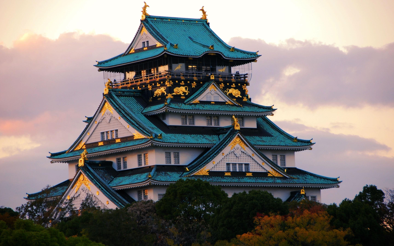 японская архитектура картинки при тренировках мышц