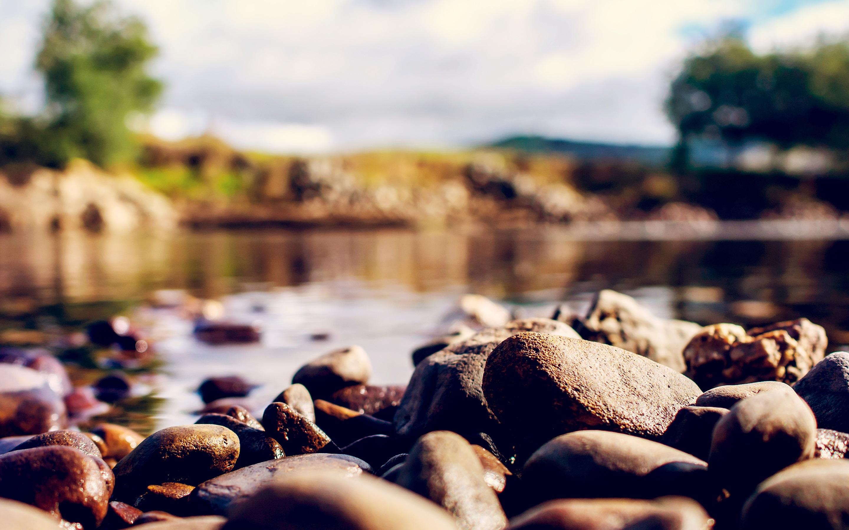 размытость трава камень загрузить