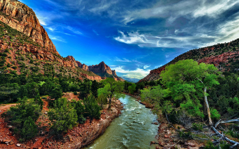 Wallpaper Zion National Park Utah Usa River Bushes Trees