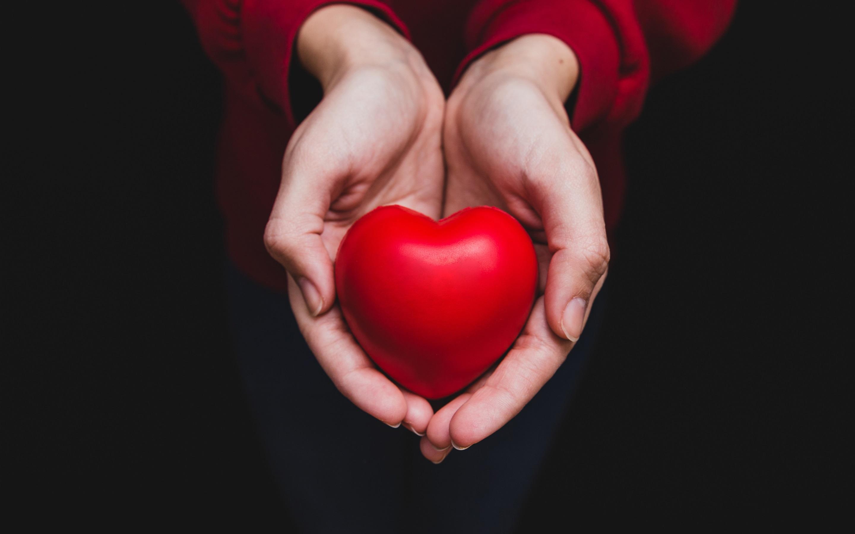 картинка огромное сердце в руках установить