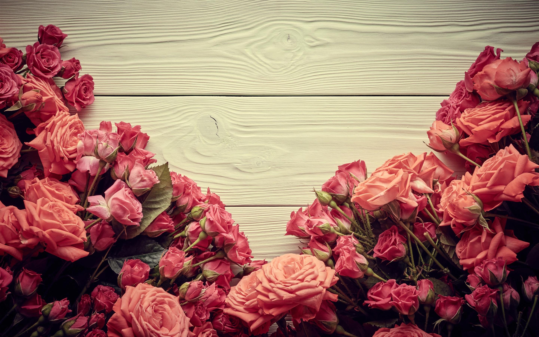 красивые картинки на фон с розами куриная