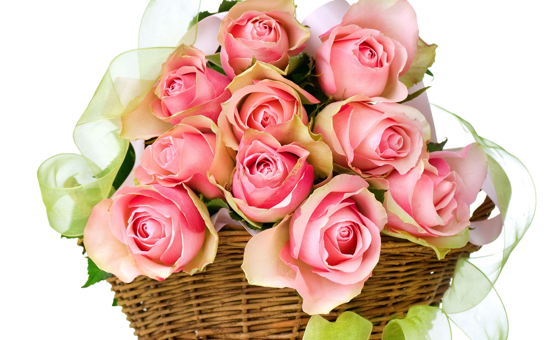 Открытки с цветами розовых роз, днем рождения