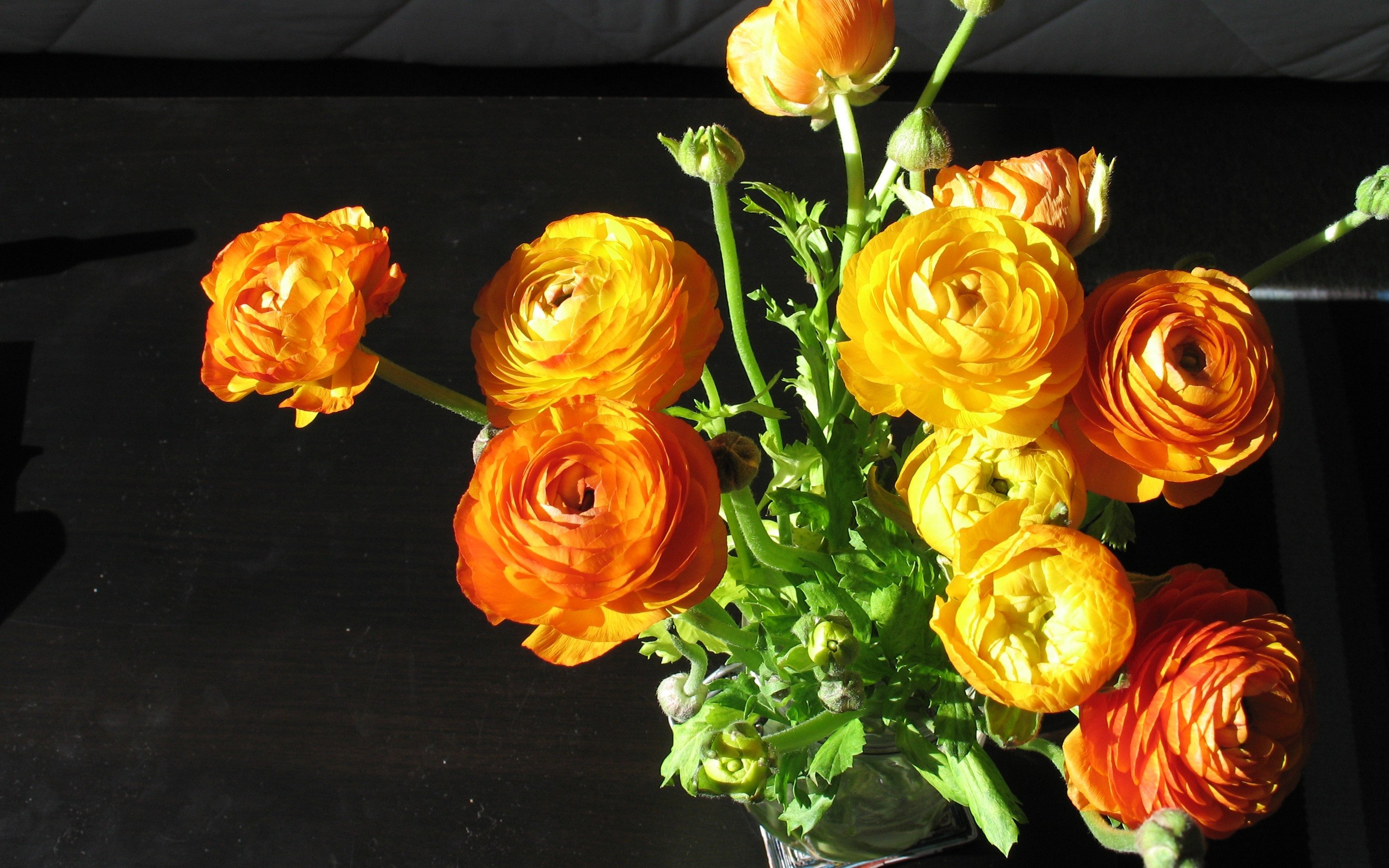 Wallpaper Orange And Yellow Peonies Flowers Bouquet 2880x1800 Hd Picture Image