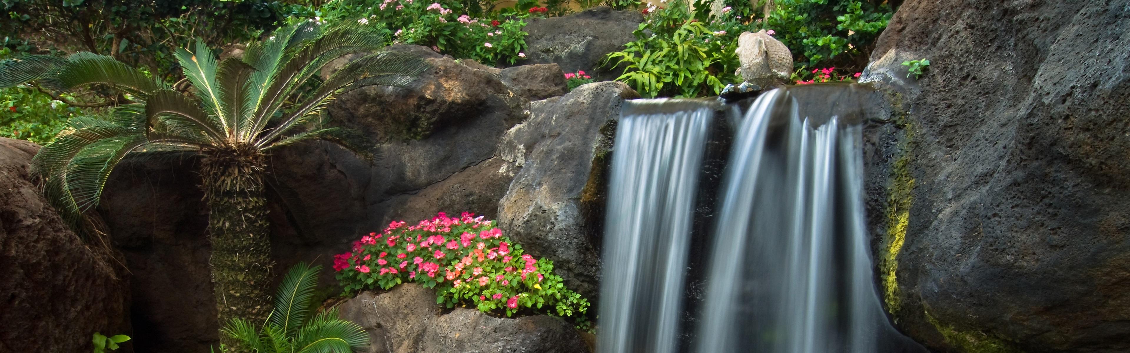 Jard n peque a cascada piedras flores de petunia palma for Piedras para cascadas