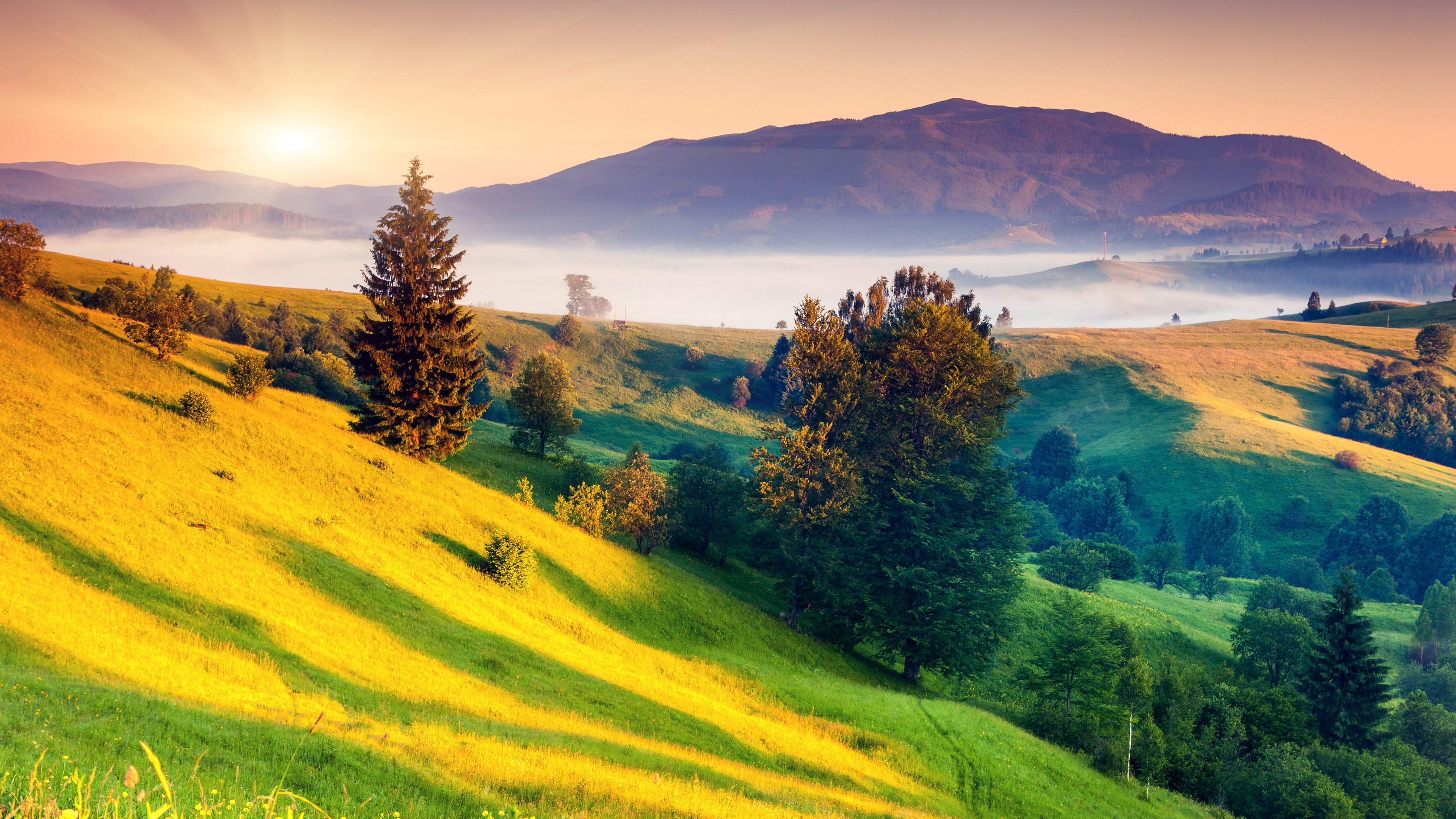 pap is de parede paisagem bonita da natureza nascer do sol amanhecer montanhas verde. Black Bedroom Furniture Sets. Home Design Ideas