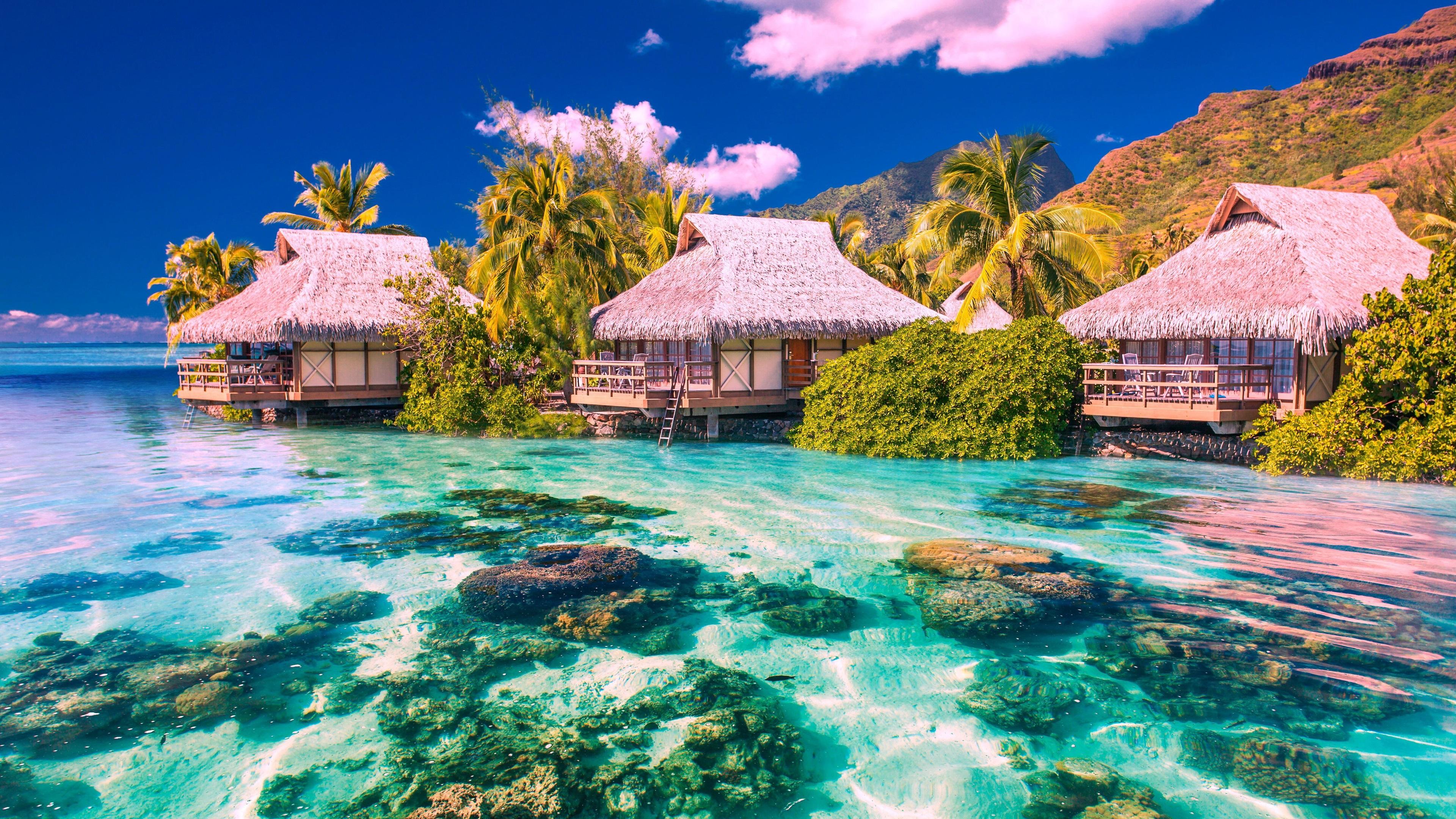природа море остров смотреть