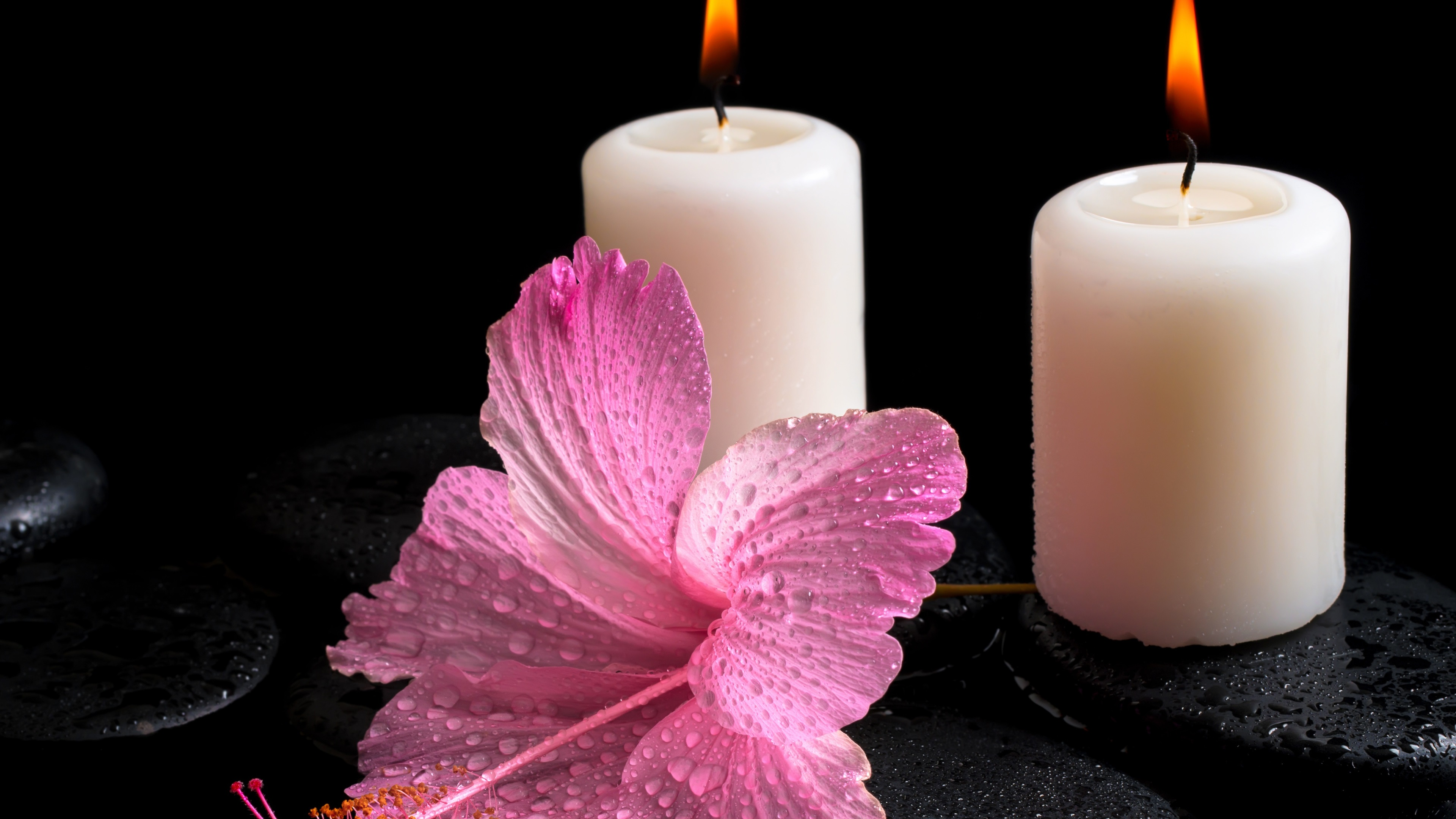 Wallpaper White Candles Fire Light Hibiscus Flower Water Drops
