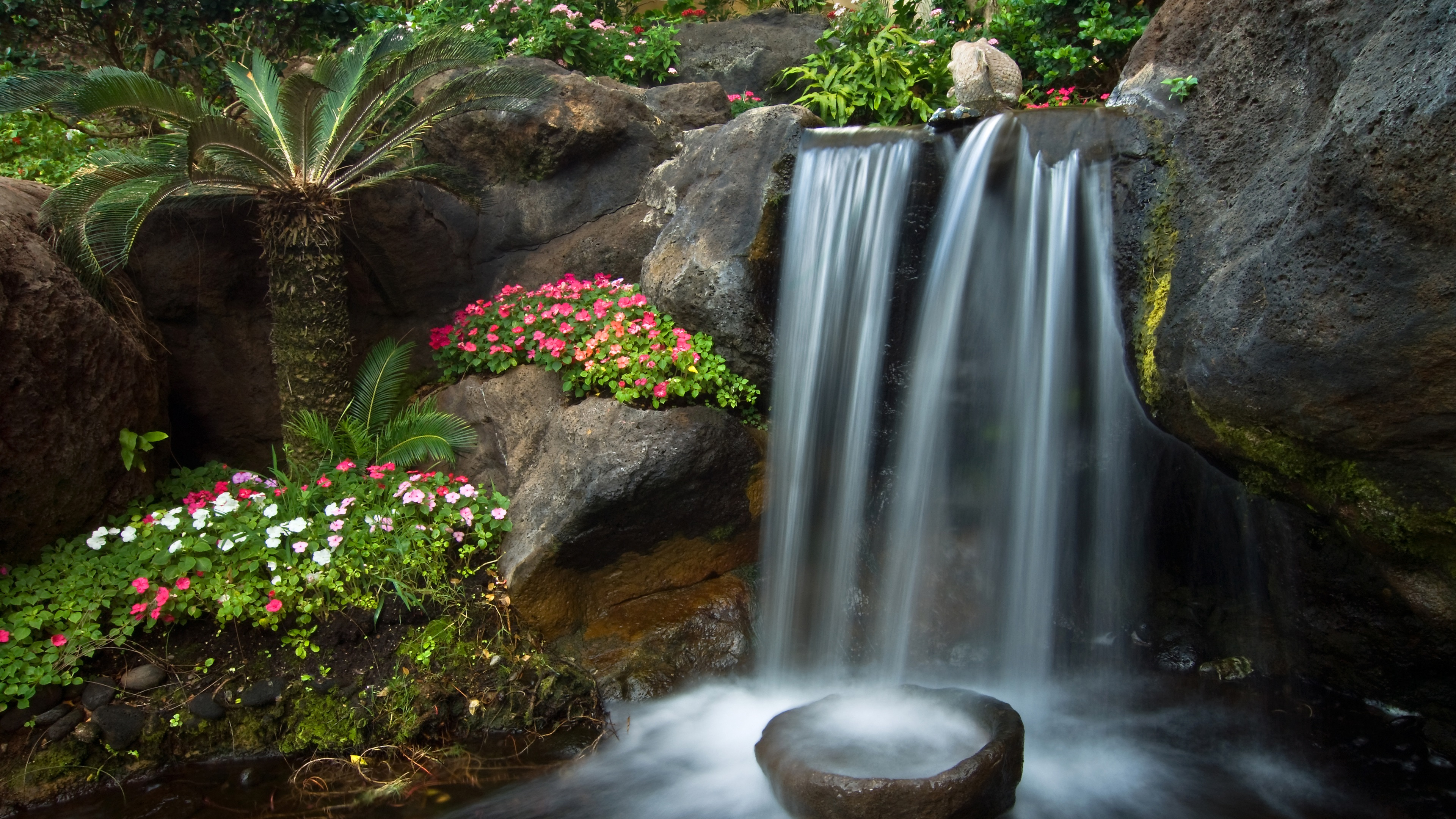 fonds d 39 cran t l charger 3840x2160 jardin petite cascade pierres fleurs de p tunia palma. Black Bedroom Furniture Sets. Home Design Ideas