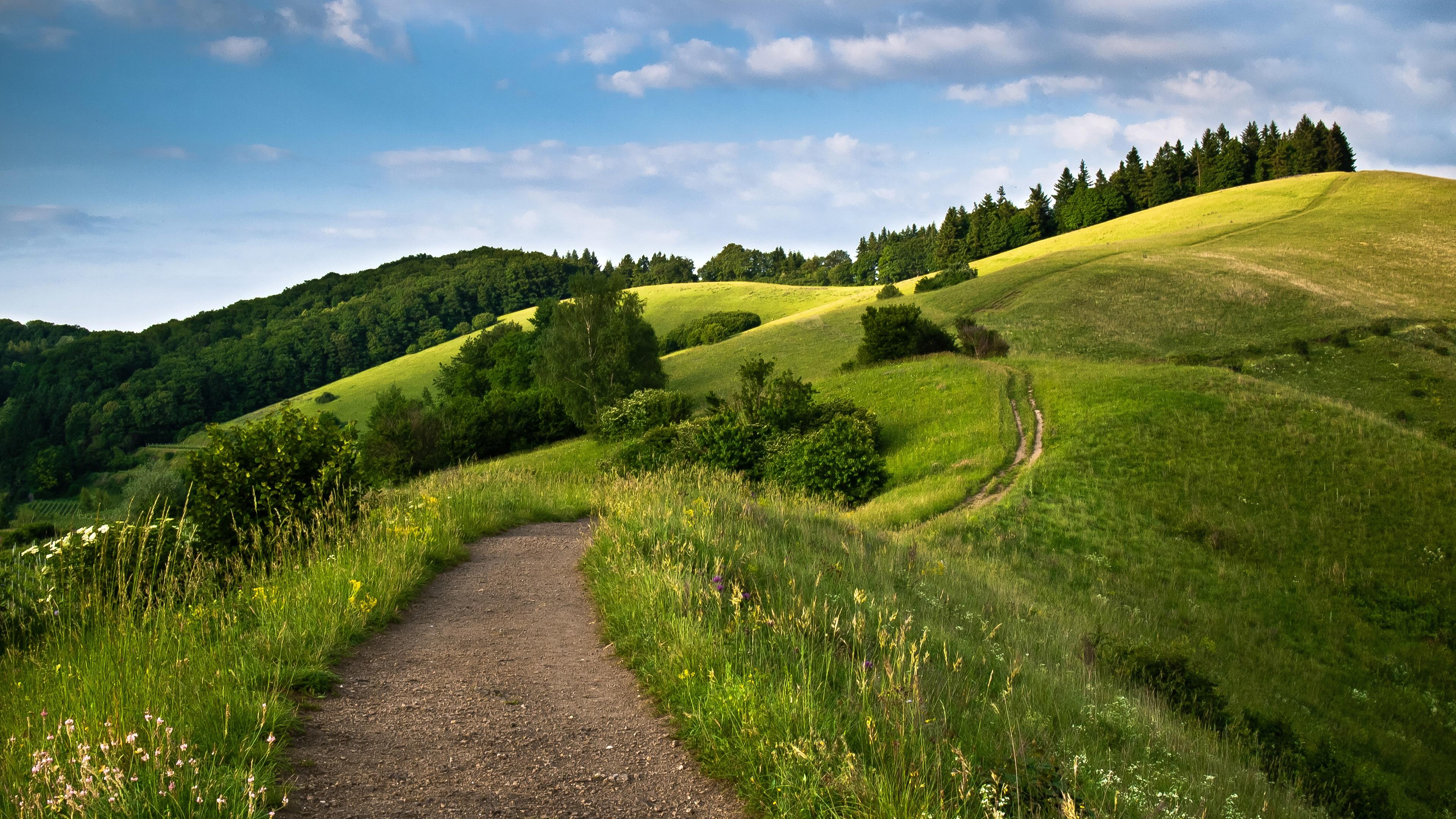 холм зелень лето небо загрузить