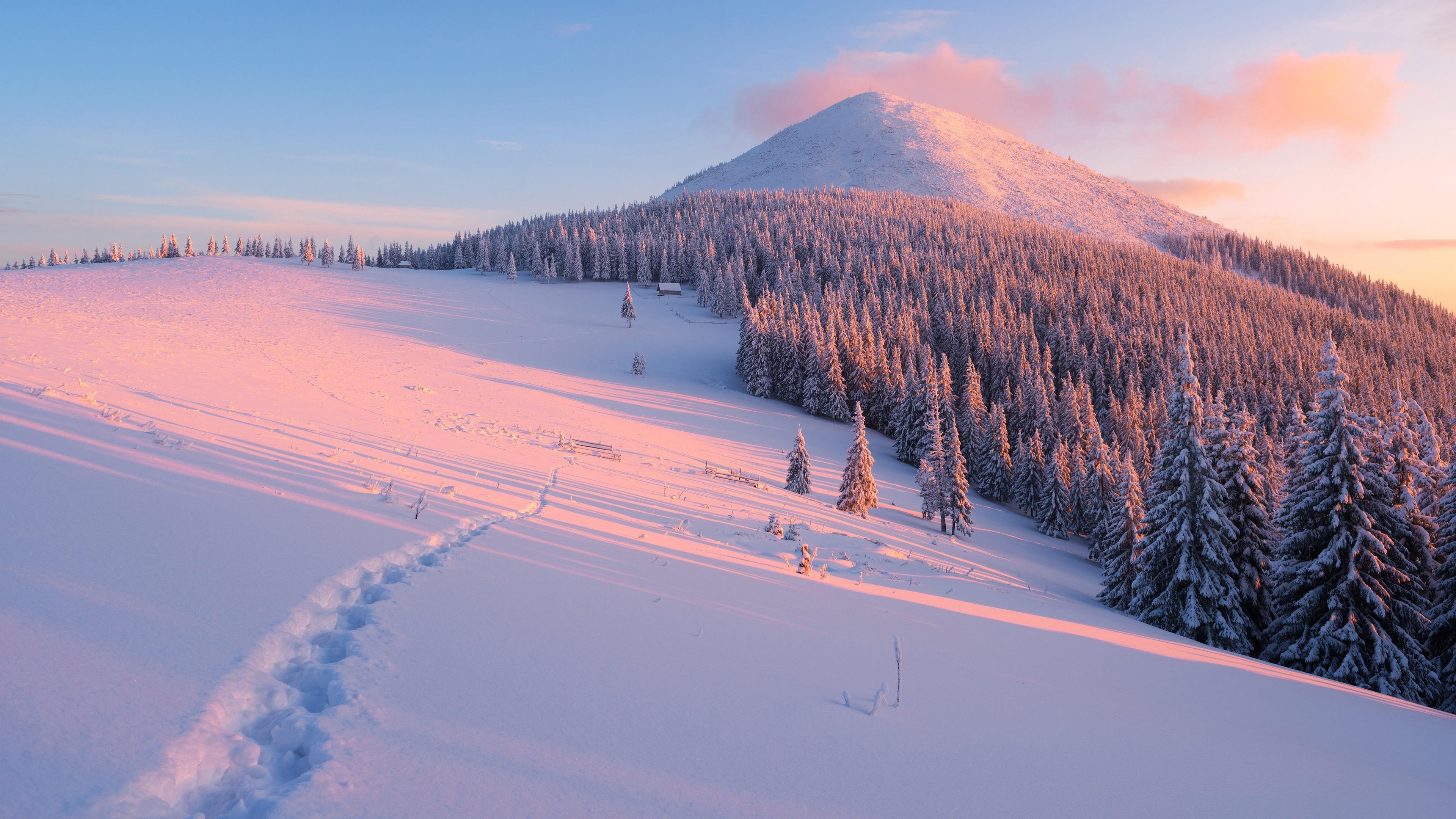 Снег горы зима ели без смс