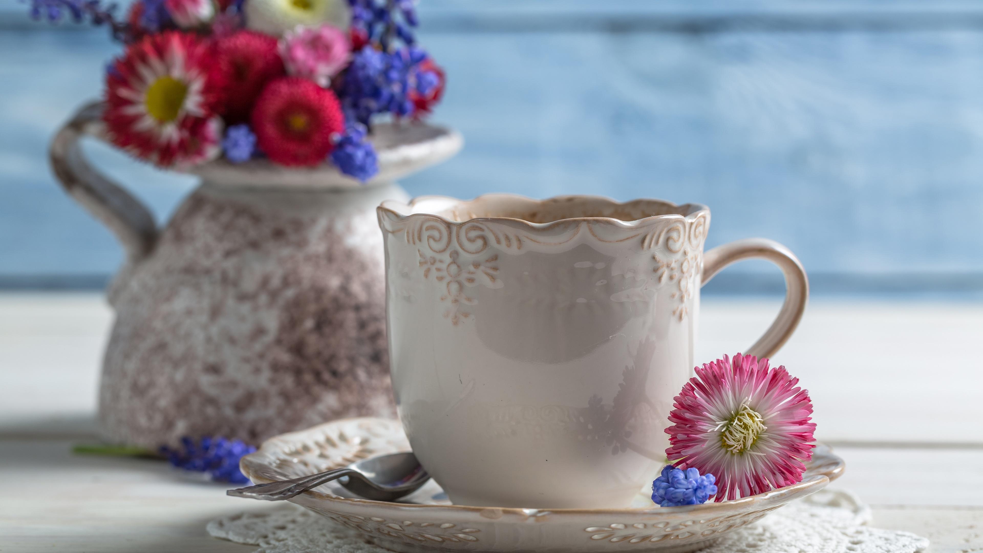 природа цветы чашка  № 1486752 без смс