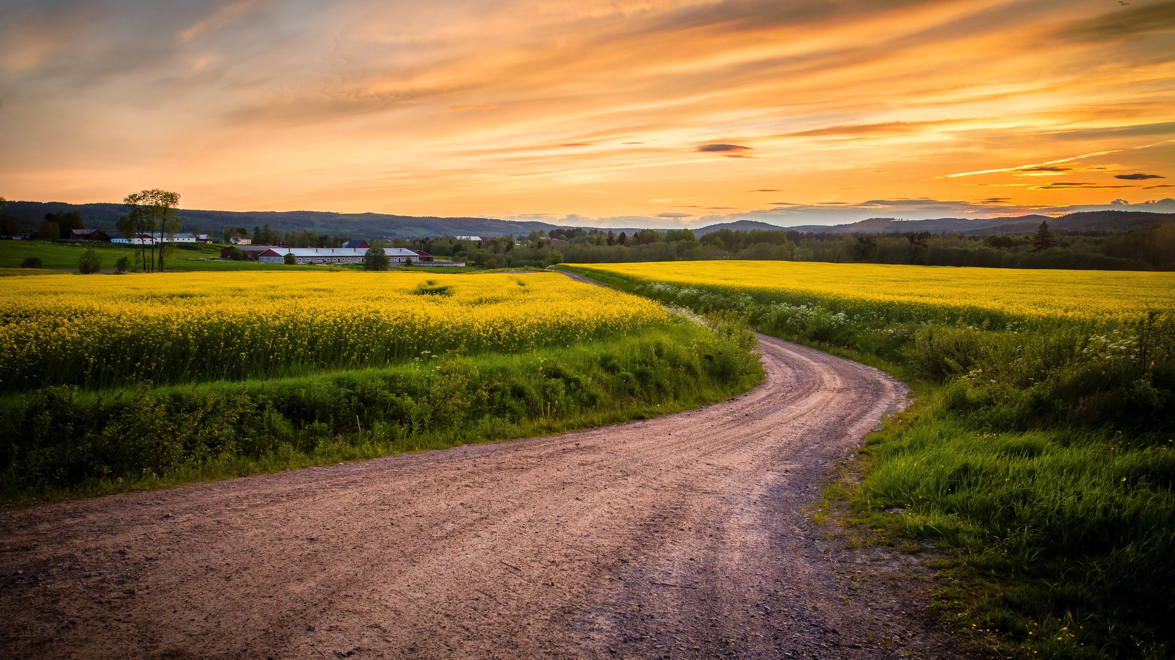 картинки с пейзажами дороги