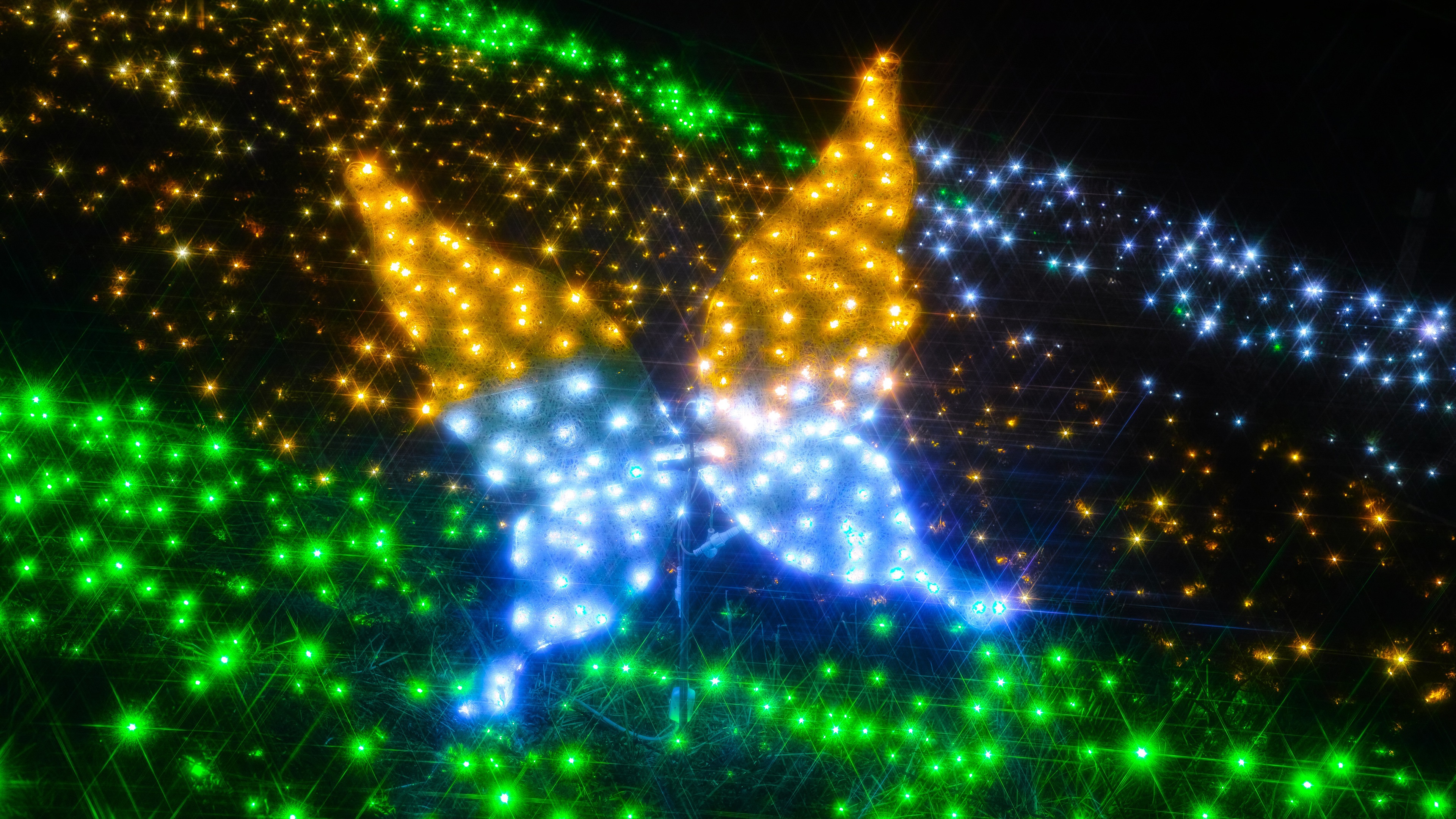 壁紙 カラフルなライト 蝶 3840x2160 Uhd 4k 無料のデスクトップの