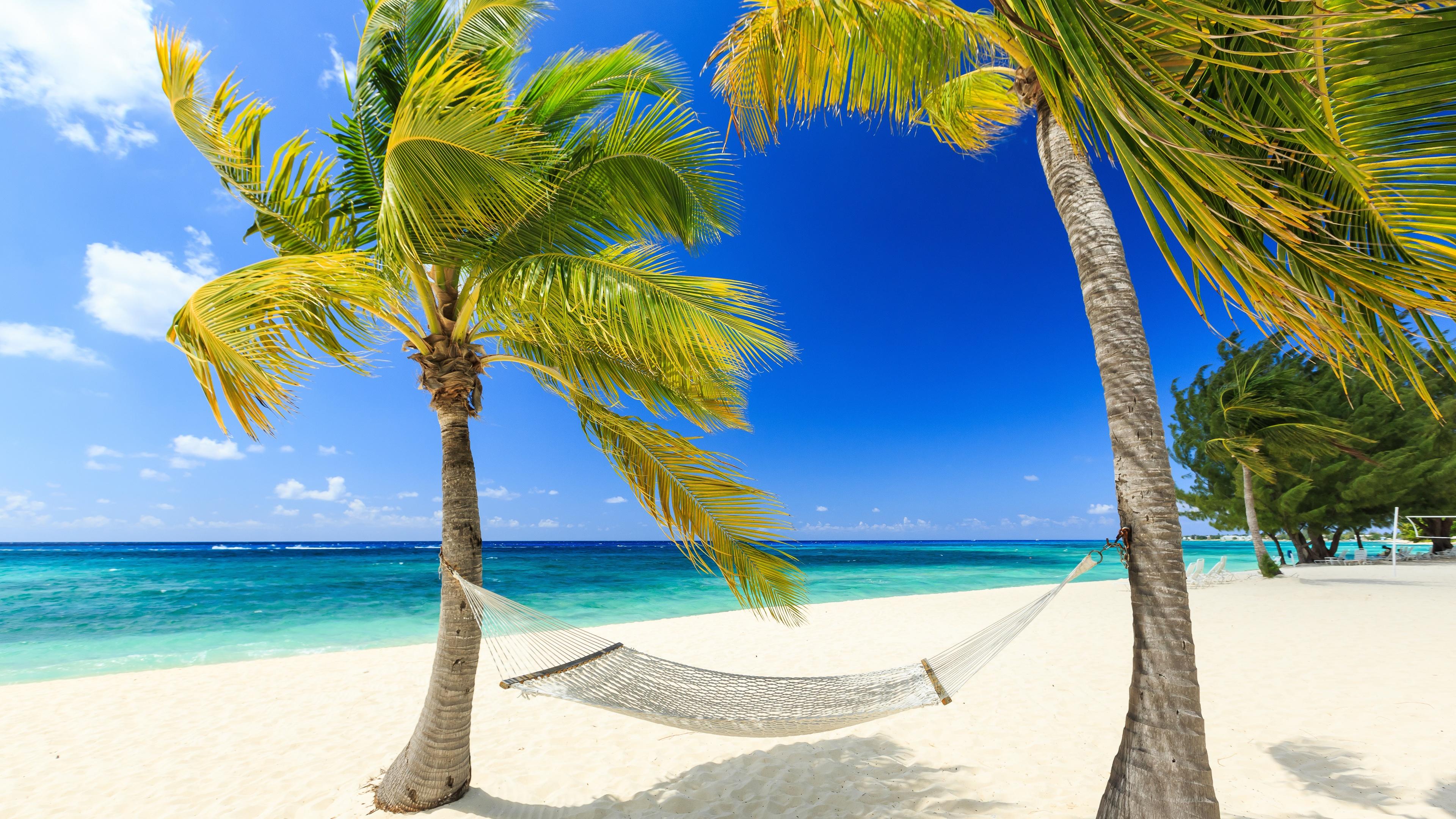 Fonds d'écran Tropical, paradis, mer, plage, palmiers, hamac, été 3840x2160 UHD 4K image