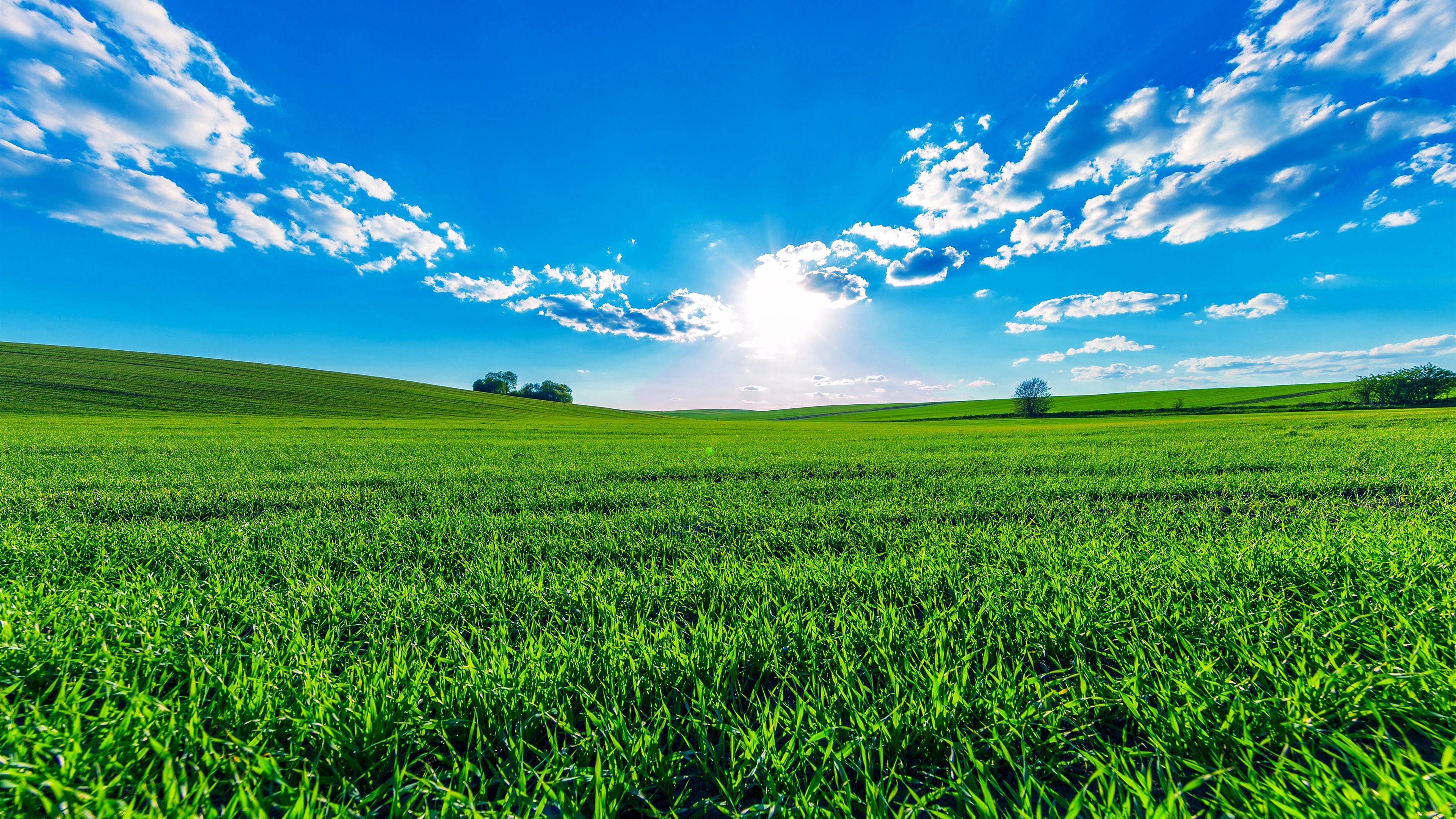 Wallpaper Green fields, blue sky, clouds, sun, beautiful ...