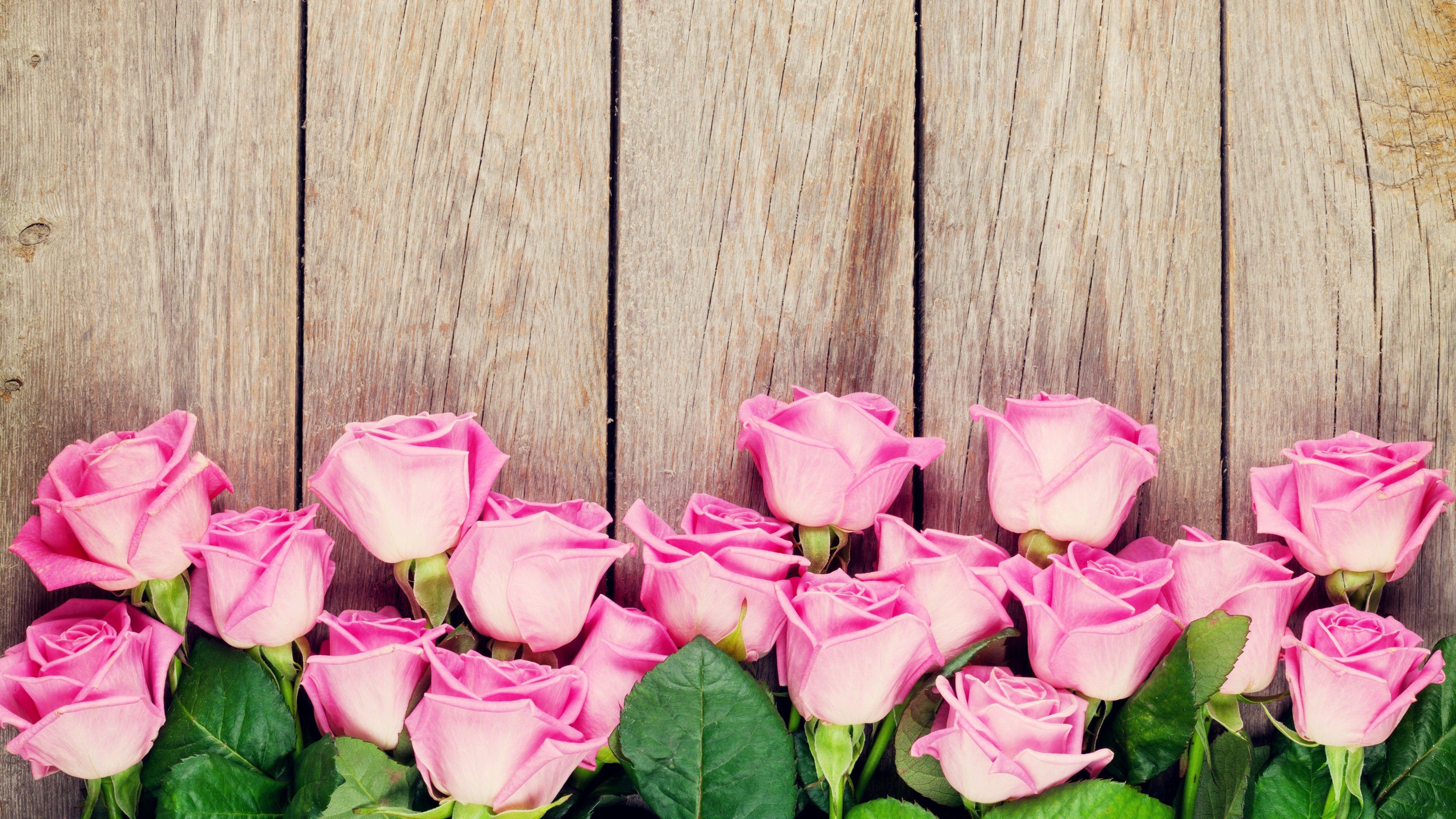 Fondo De Pantalla Flores Rosas: Fondos De Pantalla Rosas Rosadas, Fondo De Madera