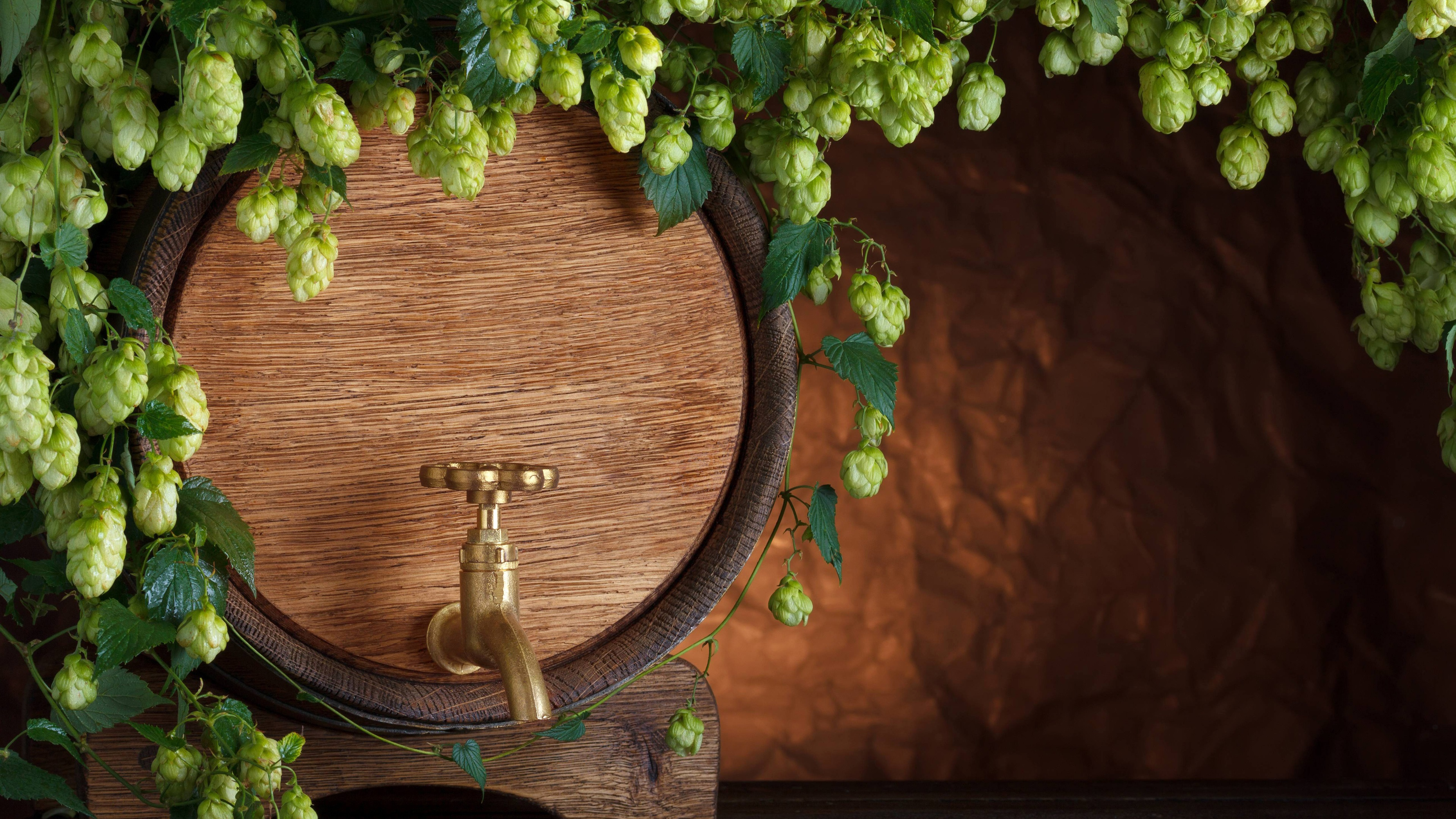 Wallpaper Barrel Beer Hops Tap 3840x2160 Uhd 4k Picture Image