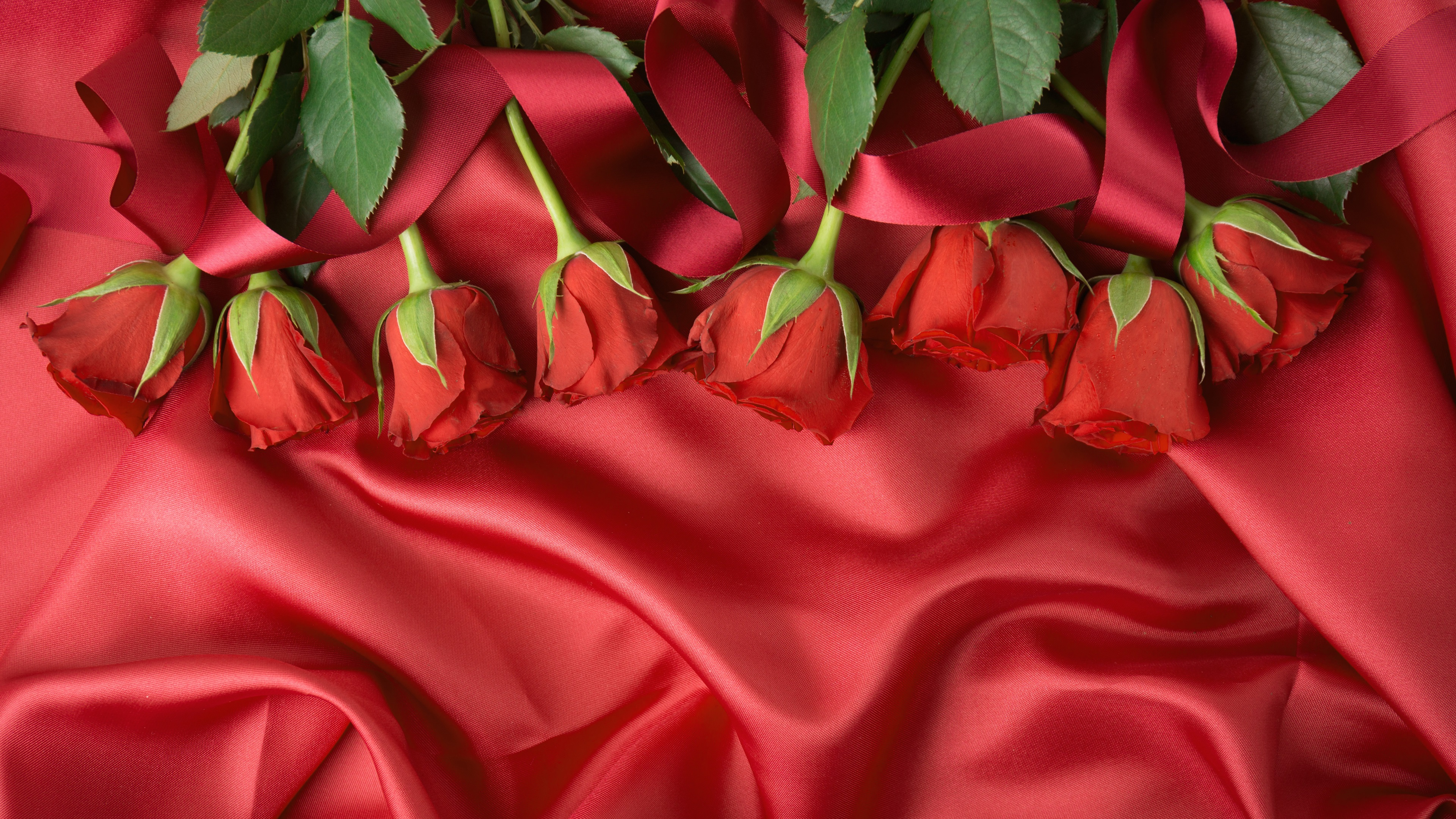 Wallpaper Red Fabric And Roses 3840x2160 UHD 4K Picture Image