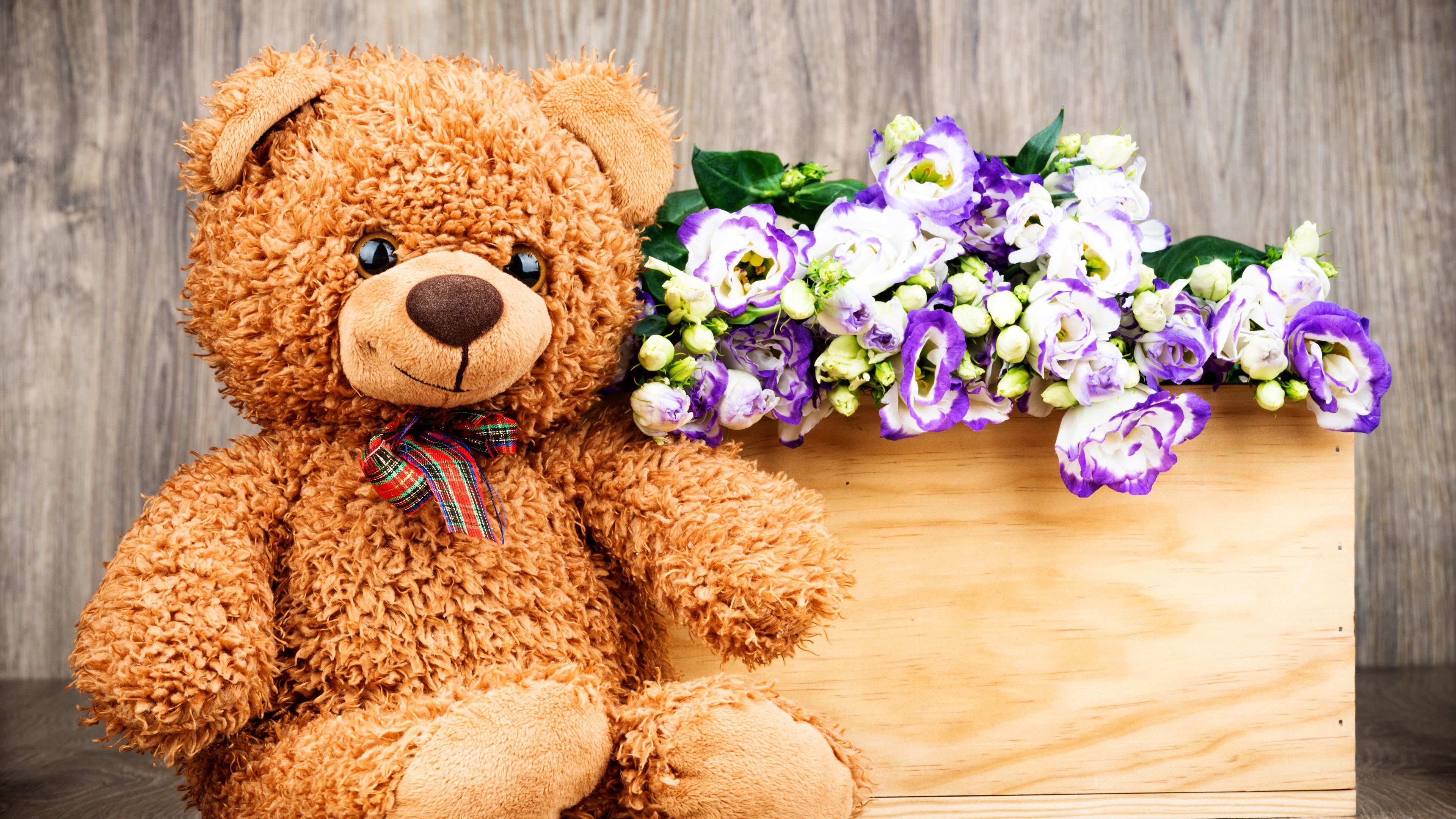 Wallpaper Teddy Toy Bear Flowers 3840x2160 Uhd 4k Picture Image