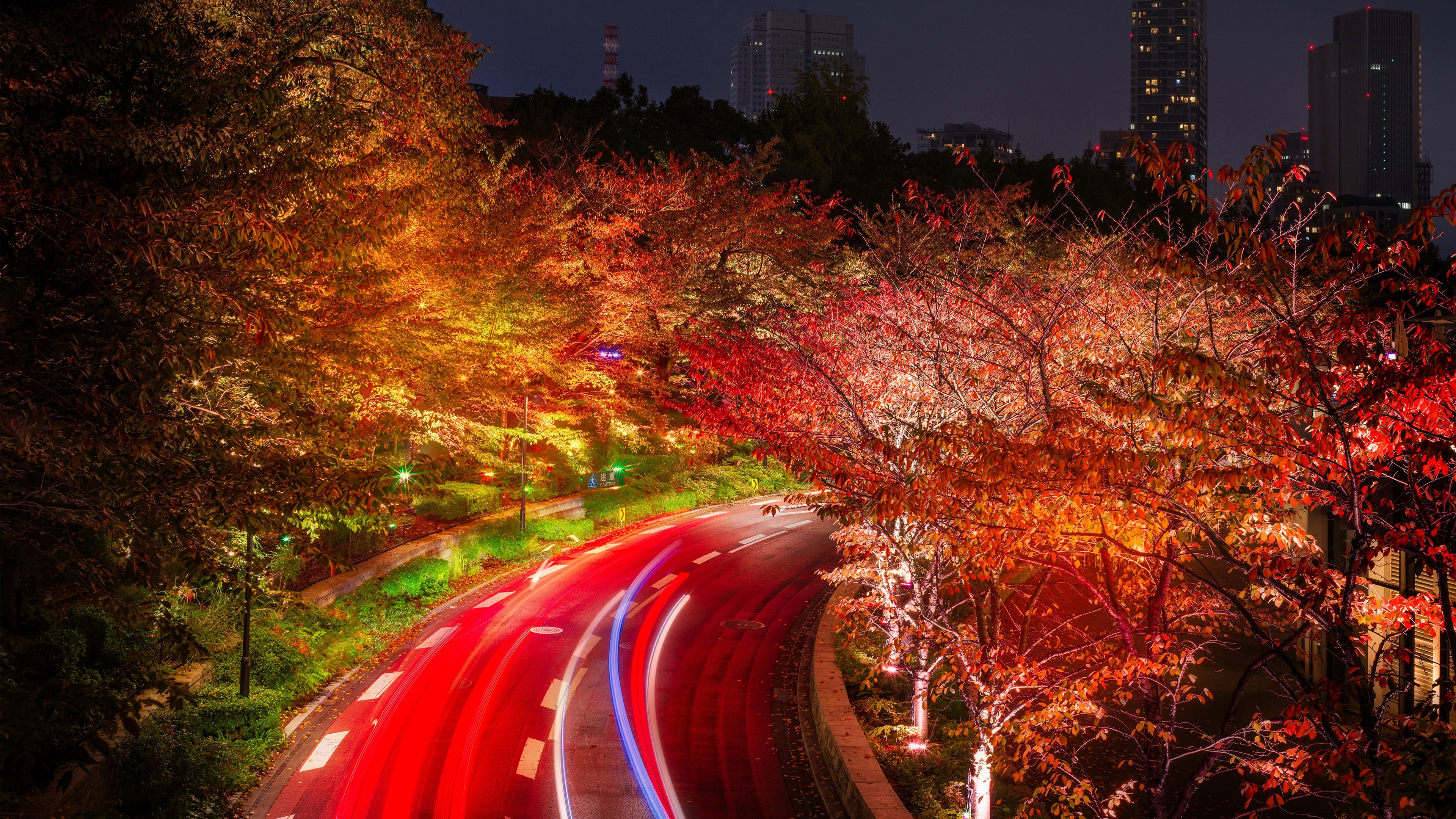 Wallpaper Tokyo, Japan, roads, trees, night, lights 3840x2160 UHD 4K