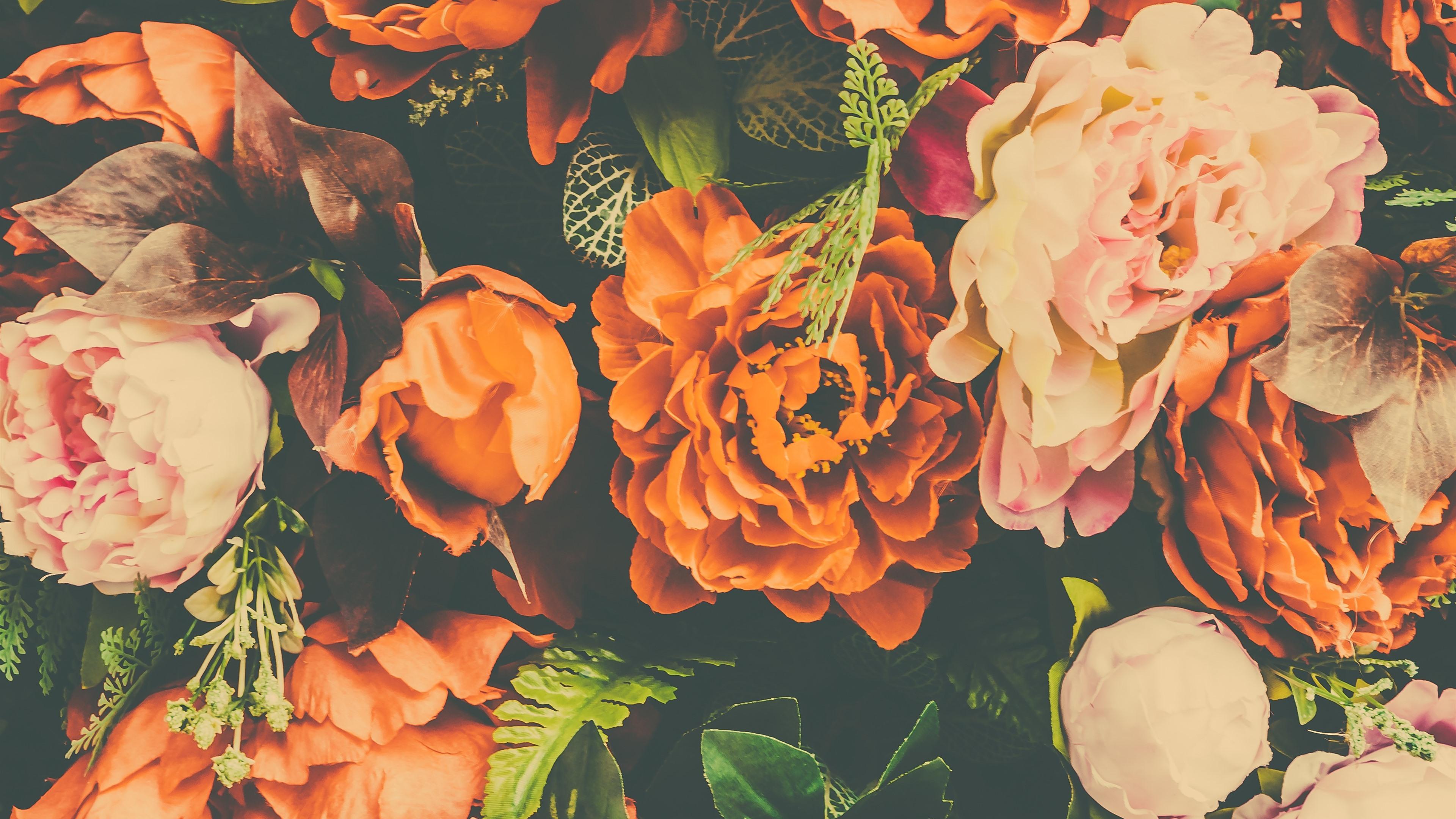 壁紙 オレンジとピンクの牡丹 造花 3840x2160 Uhd 4k 無料の