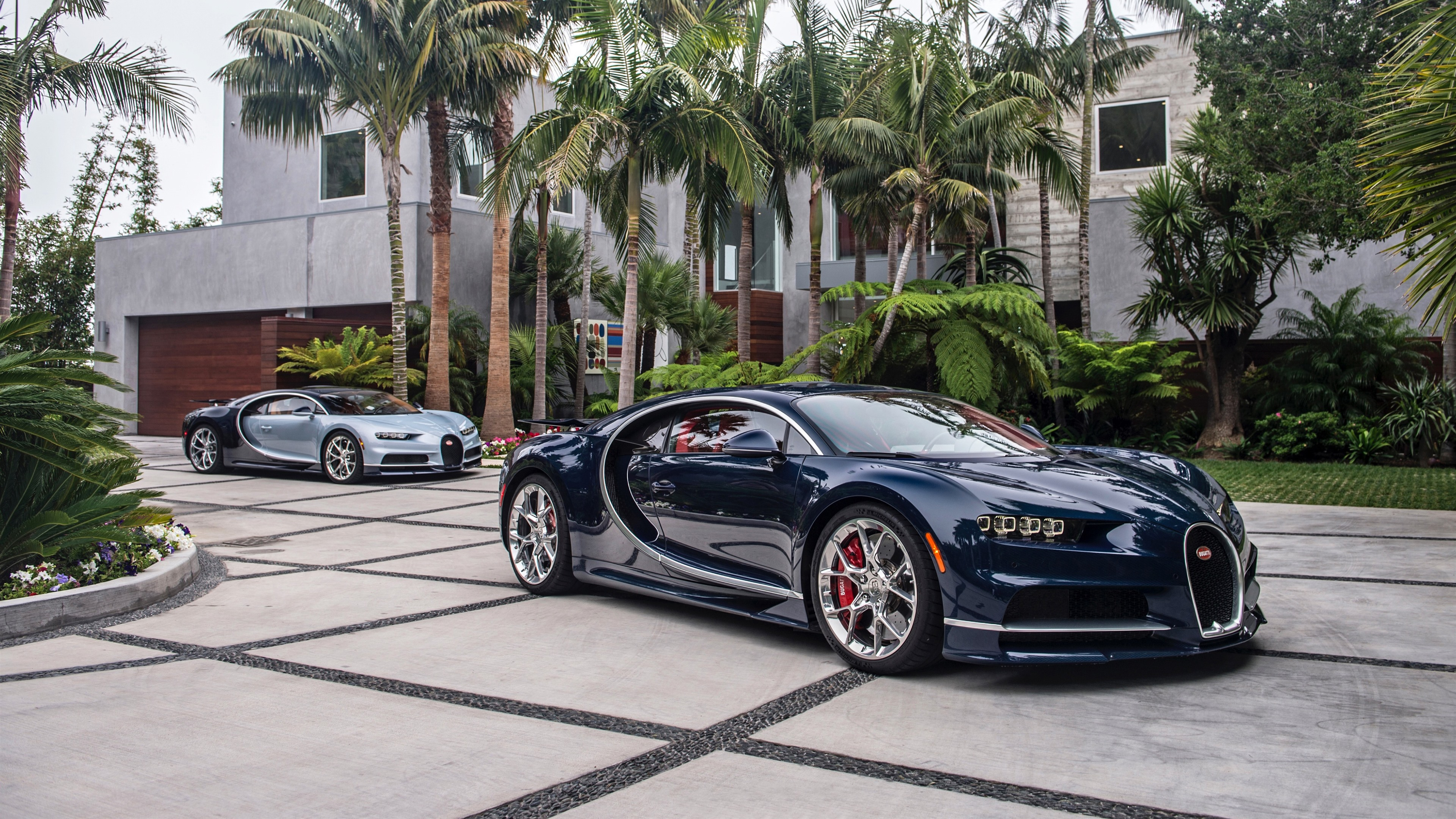 Wallpaper Bugatti Blue Supercar Palm Trees 3840x2160 Uhd 4k Picture Image