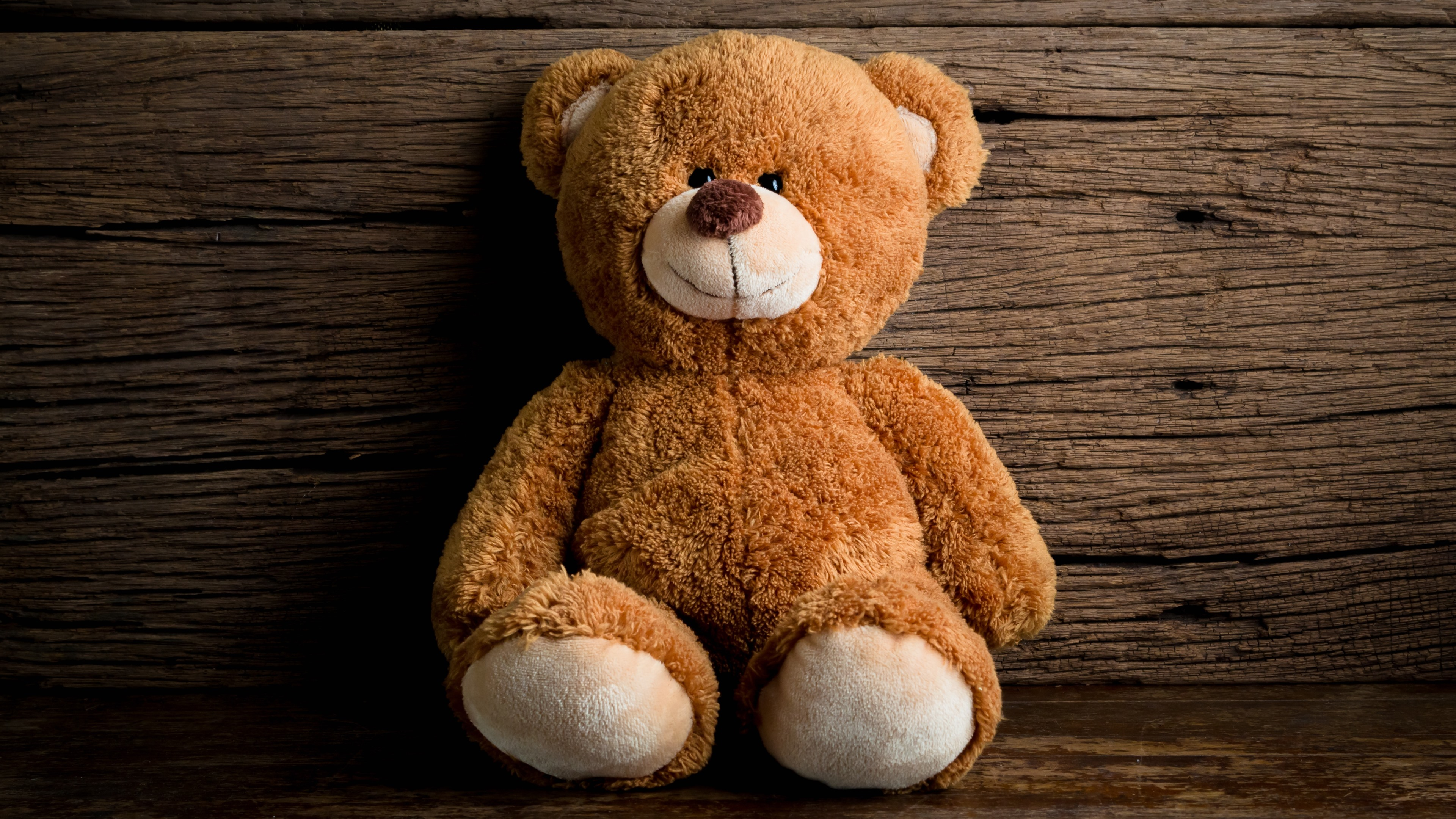 Wallpaper Cute Teddy Bear Toy 5120x2880 Uhd 5k Picture Image