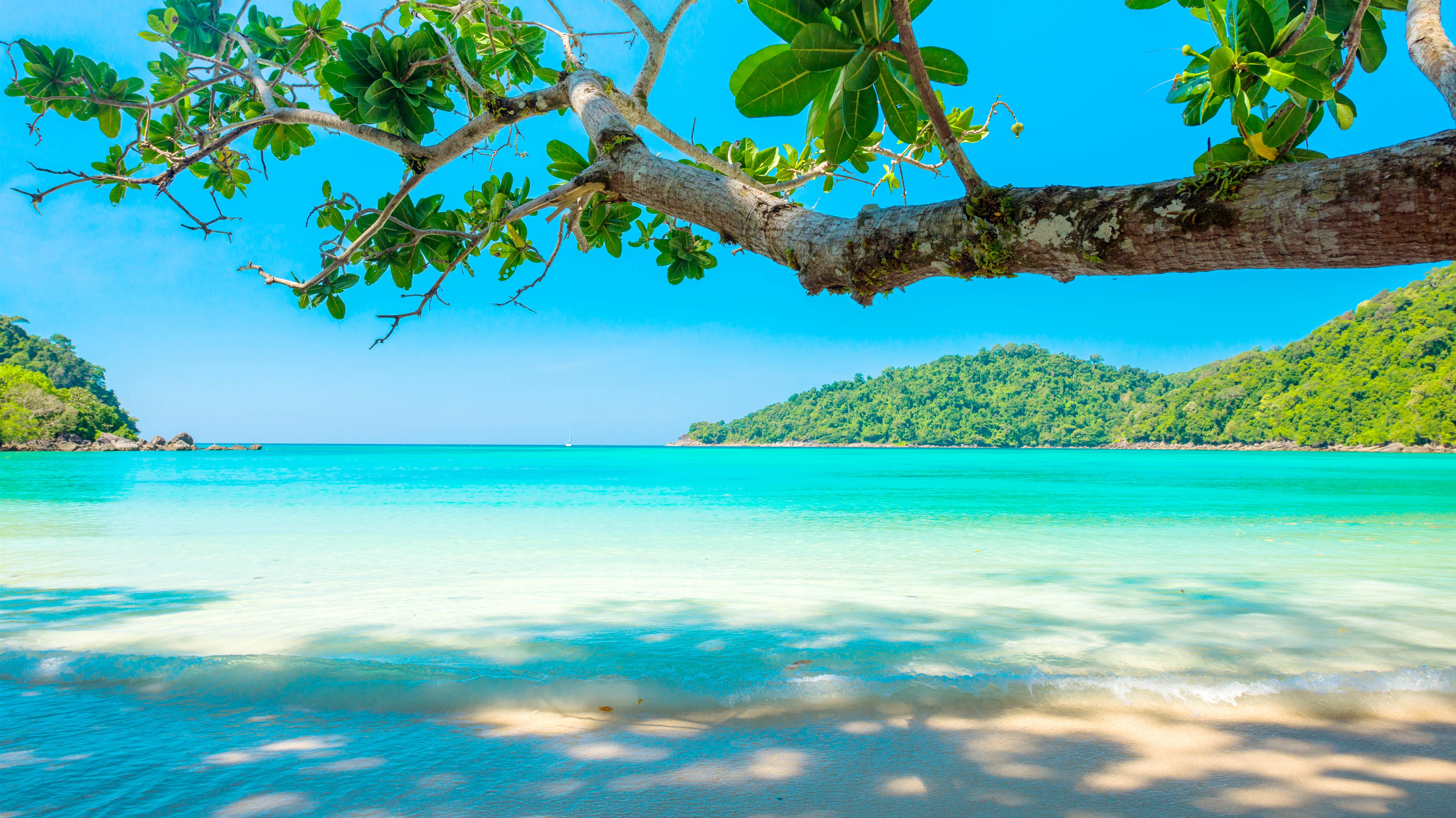 Wallpaper Beautiful Sea, Beach, Tree, Tropical 5120x2880