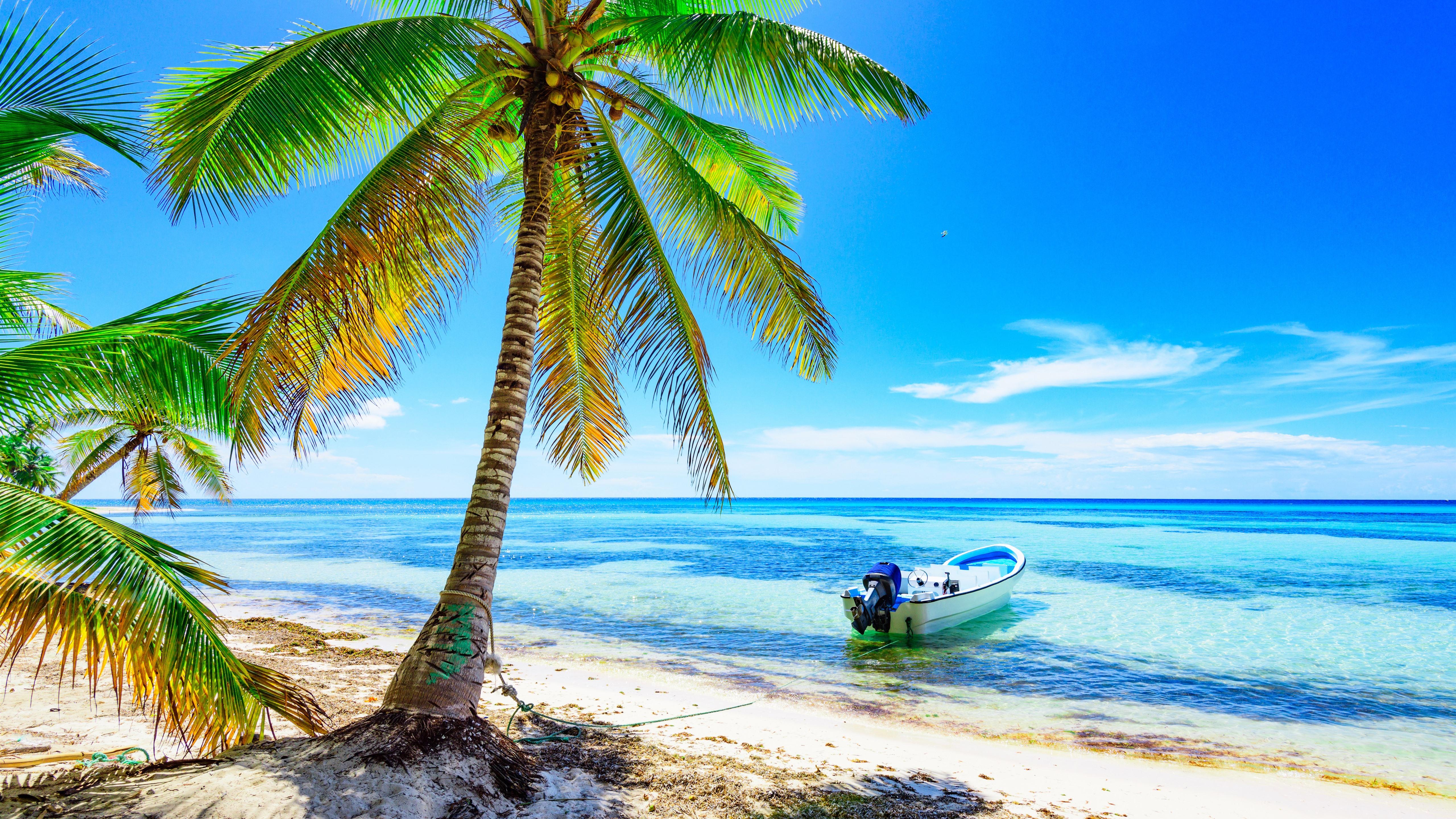 Fondos De Pantalla Palmeras Playa Barco Mar Cielo Azul Tropical