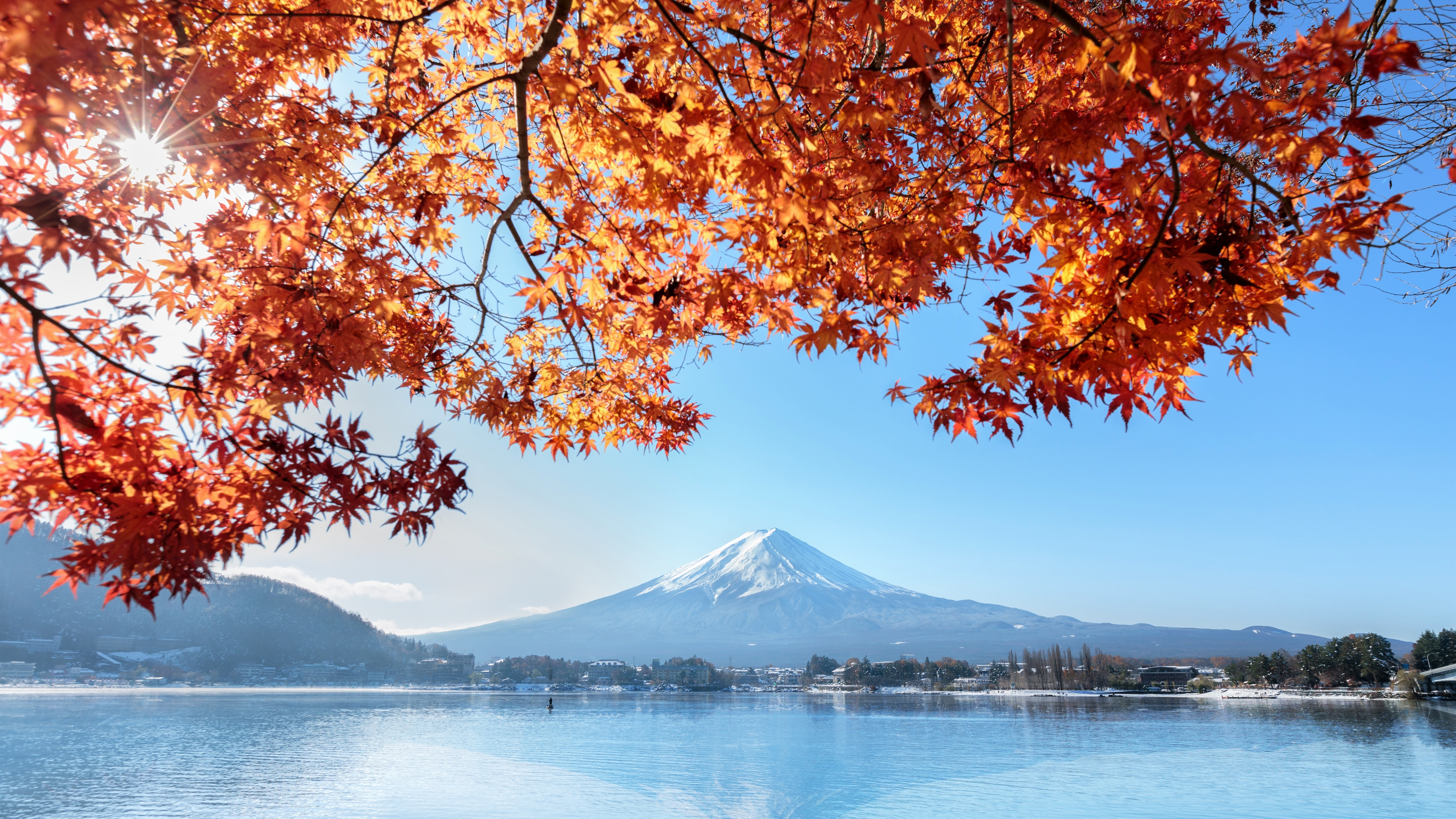 Wallpaper Fuji Mountain Red Maple Leaves Lake Autumn