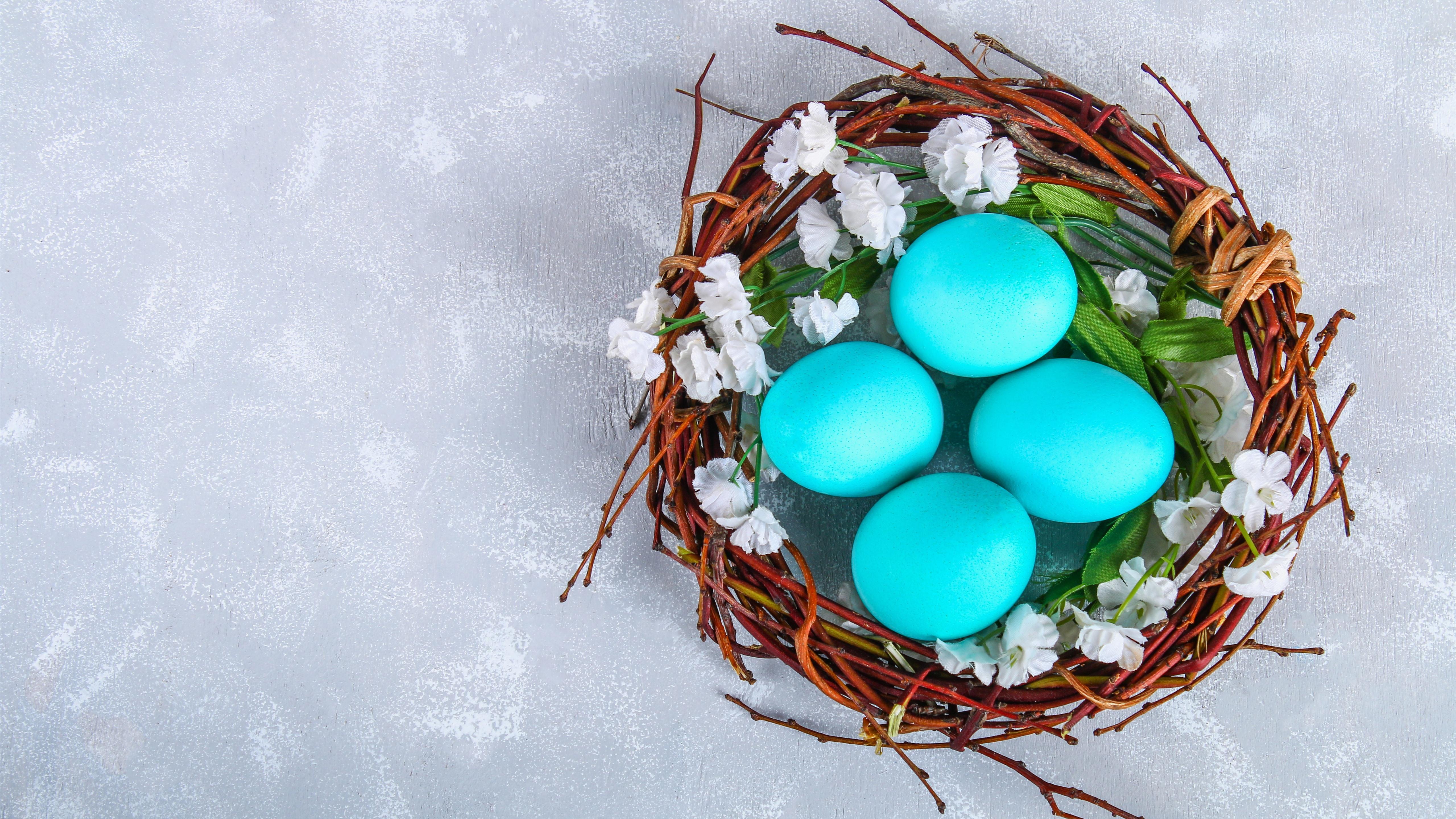 Wallpaper Blue Easter Eggs Nest 5120x2880 Uhd 5k Picture Image