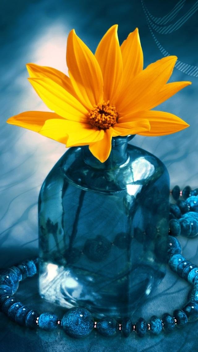 Wallpaper 3d Flower Bottle 1920x1200 Hd Picture Image