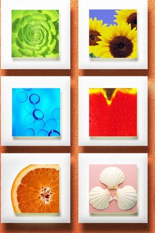 iPhone 배경 화면 월 장식 과일 꽃