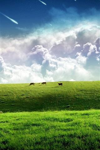 iPhone 배경 화면 하늘, 푸른 잔디에 걸쳐 유성