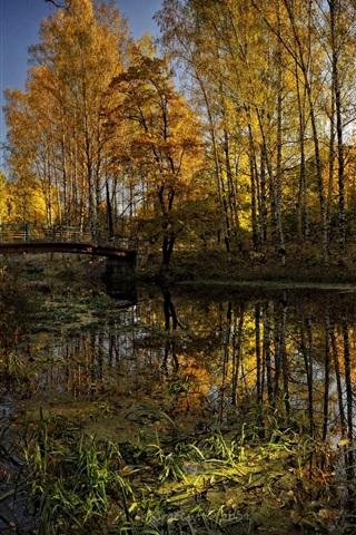 iPhone 배경 화면 공원 하천 교량 자연의 아름다움