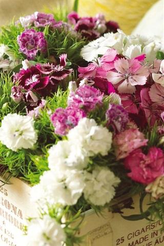 iPhone 배경 화면 꽃 상자에 핑크색과 흰색 꽃