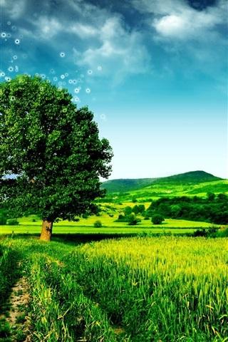 iPhone 배경 화면 꿈 녹색 풍경