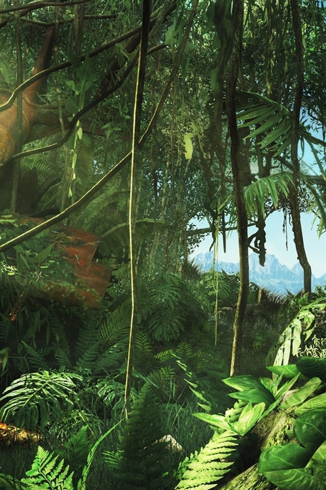 Far Cry 3 Hd 640x960 Iphone 4 4s Wallpaper Background Picture Image