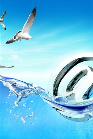 iPhone Papéis de Parede Seagull e Internet imagem criativa