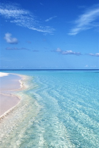 iPhone 배경 화면 여름 푸른 해변 파도