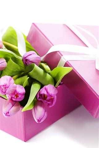 iPhone Обои Дар тюльпанов