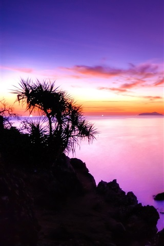 iPhone Wallpaper The purple sunset of the coast