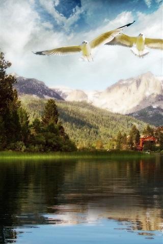 iPhone Papéis de Parede Mundo de sonho da beleza do lago