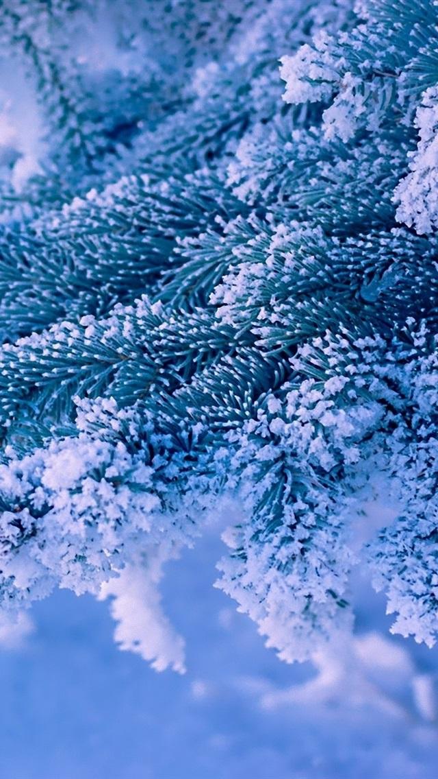 новые лоты красивые зимние картинки для самсунг гипермаркеты