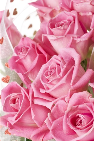 iPhone Wallpaper Pink roses bouquet with drops of water