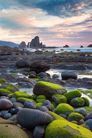 iPhone Wallpaper Moss stone beach sun rises
