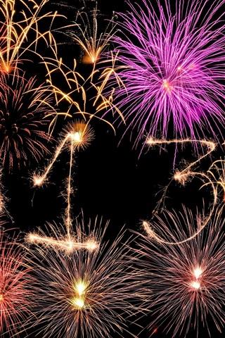 iPhone Wallpaper 2013 Happy New Year, fireworks creative, beautiful night sky