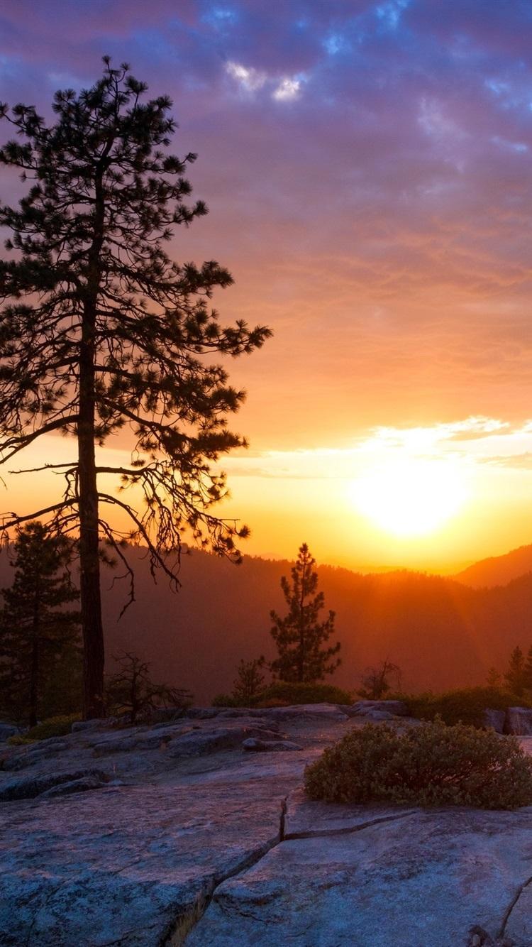 丘の上の日の出 美しい風景 750x1334 Iphone 8 7 6 6s 壁紙 背景 画像